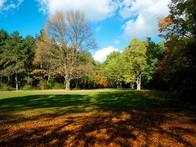Colores de otoño en Tiergarten