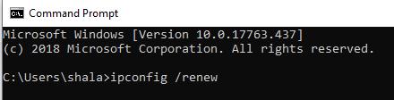 ipconfig renew