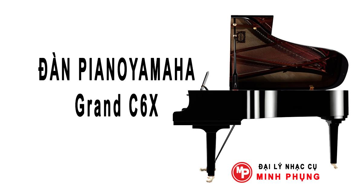 Tư vấn mua đàn grand piano và vị trí đặt đàn trong không gian mà khách hàng chọn