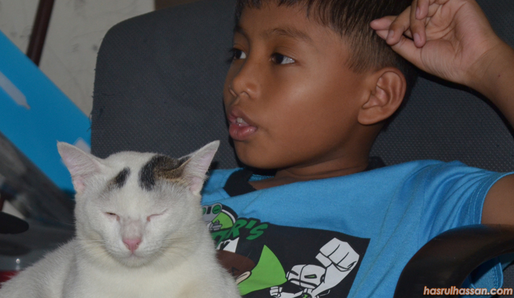 6 Tips Bela Haiwan Peliharaan Jika Ada Anak Kecil Dalam Rumah