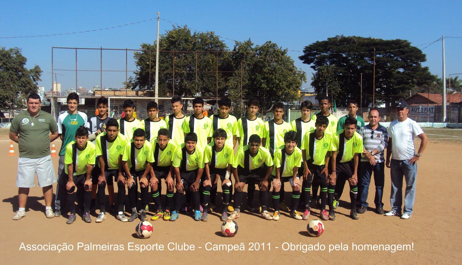 Geraldinho da Saúde  Associação Palmeiras Esporte Clube 9c4a7184373c7