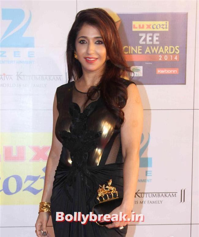 Krishika Lulla, Zee Cine Awards 2014 Red Carpet Pics
