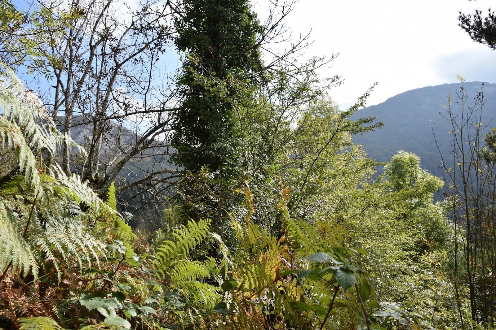 Kraj Basków trekking z dziećmi Urkiola