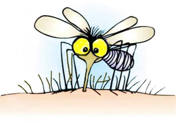 防蚊釘大法,簡單易做