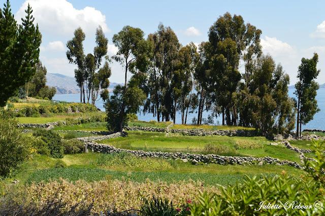Île d'Amantani au Pérou sur le lac Titicaca