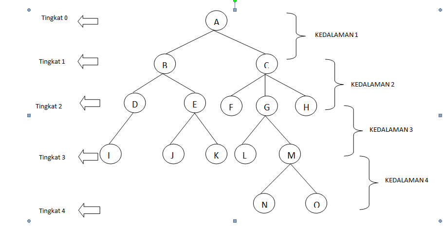 pohon biner adalah panduan investor untuk memahami dan menguasai perdagangan opsi