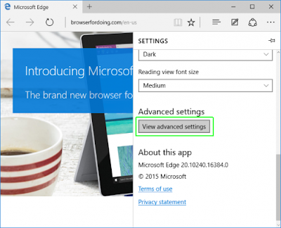 tampilan pengaturan pada Microsoft Edge di Windows 10