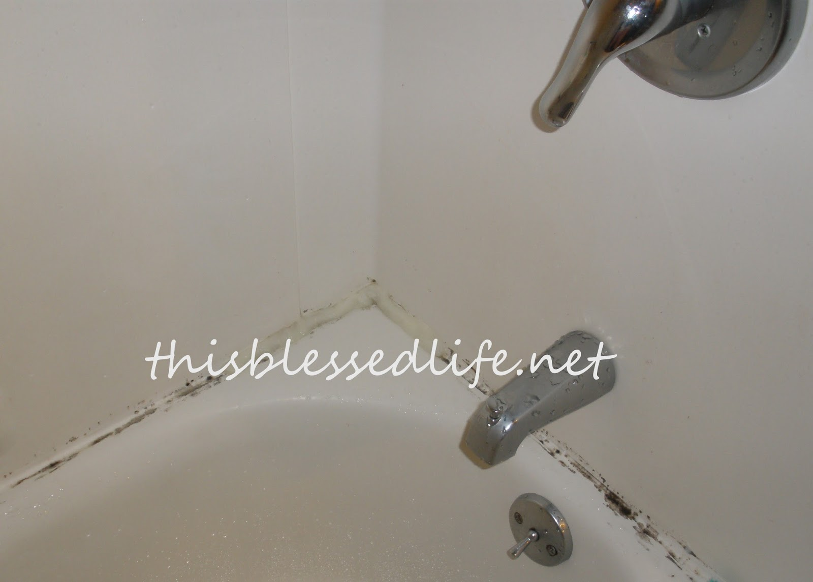 This Blessed Life Getting Mold Out Of The ShowerBefore After - Bathtub mildew removal