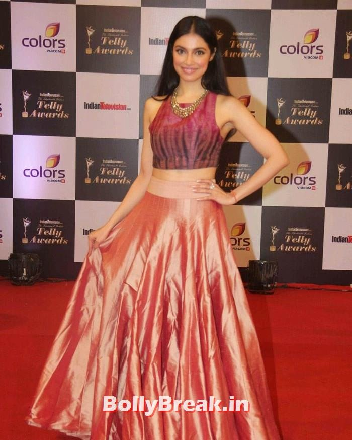 Divya Khosla Kumar, Pics on Red Carpet of 13th Indian Telly Awards 2014