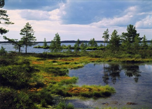 All About The Famous Places: Latvia Landscape