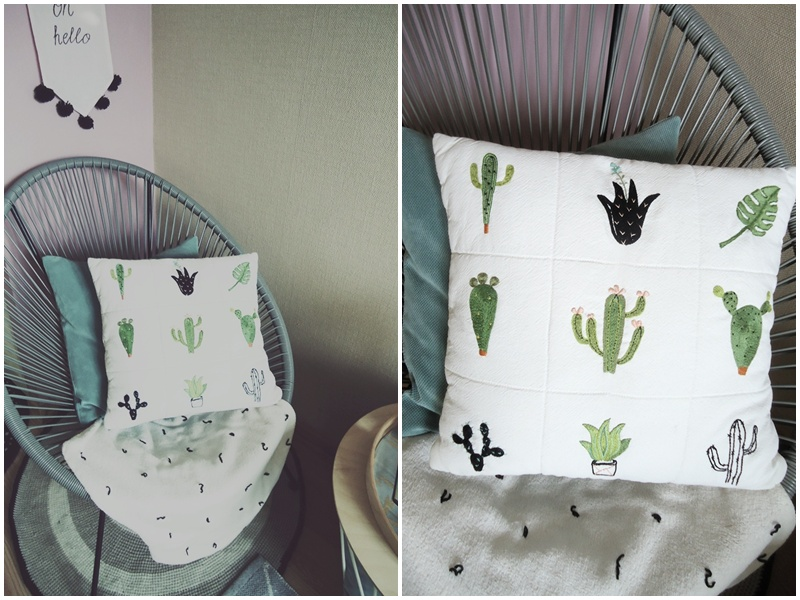 pomysł na kaktusy