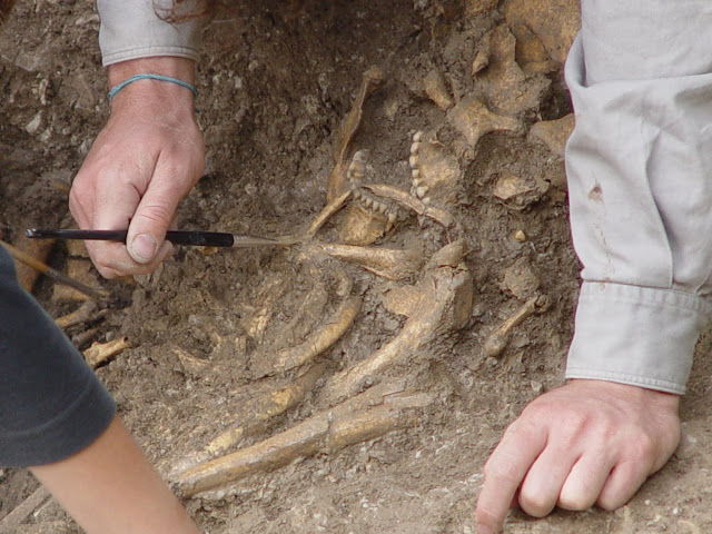 Ancient dental plaque sheds new light on the diet of Mesolithic foragers in the Balkans