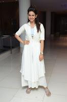 Rakul Preet Glam at Sarrainodu Success Meet HeyAndhra.com