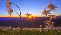 En Güzel Sonbahar Manzara Fotoğrafları