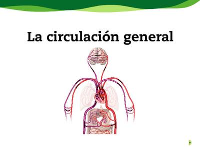 http://www.e-vocacion.es/resources/biblioteca/html/143315/recursos/la/U02/pages/recursos/143315_P27.html