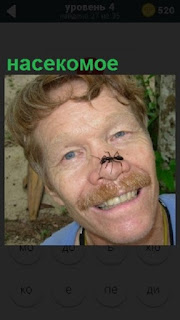 На лице у мужчине на самом носу устроилось насекомое и ползет
