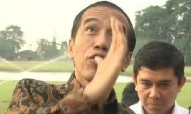 Aktivis Politik: Kebohongan Jokowi Ditutup Media Mainstream dan Para Pendukungnya