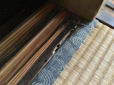 生坂村 ひとつ石 キクイムシの仕業と思われる穴がたくさんあります!