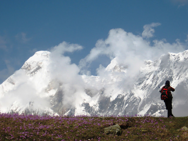 View of snow capped mountains and flowers in Munsiyari