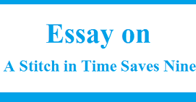 Healthy Lifestyle Essay  English Class Reflection Essay also Research Paper Essay Essay On A Stitch In Time Saves Nine  Words  Wikiessays English Essay Story