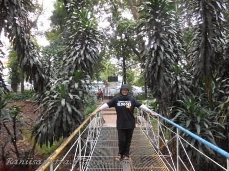 jembatan di taman lansia