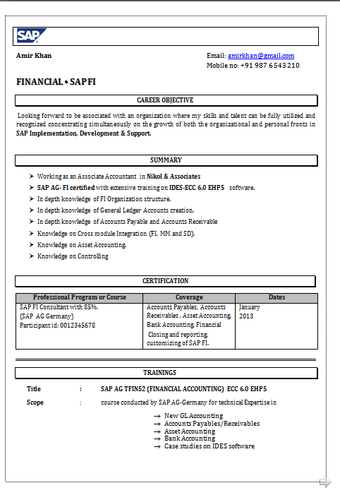 dynamic resume  resume format for sap fico