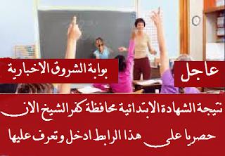 http://shorouk-news.com/natega/