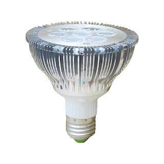 10W PAR30 LED投射燈,LED燈泡