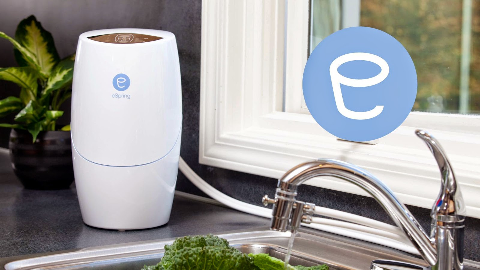 Amway Espring Home Water Treatment System
