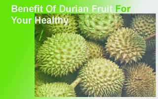 Benefit Of Durian Fruit For Human Health – startgohealthy.com