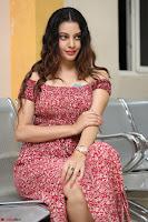 Diksha Panth in a Deep neck Short dress at Maya Mall pre release function ~ Celebrities Exclusive Galleries 079.JPG