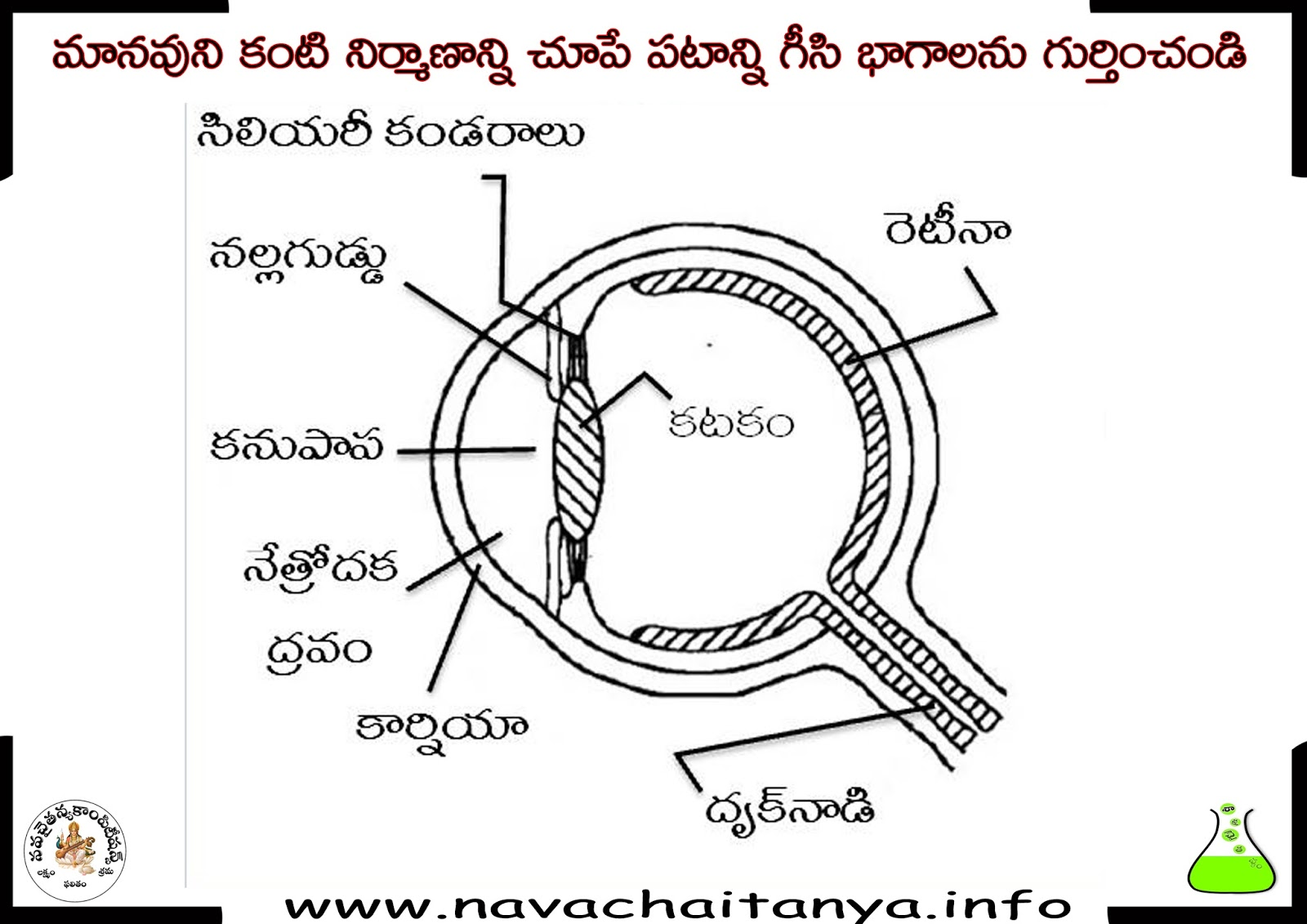 10th class physical science diagrams   u0c2e u0c3e u0c28 u0c35 u0c41 u0c28 u0c3f  u0c15 u0c02 u0c1f u0c3f