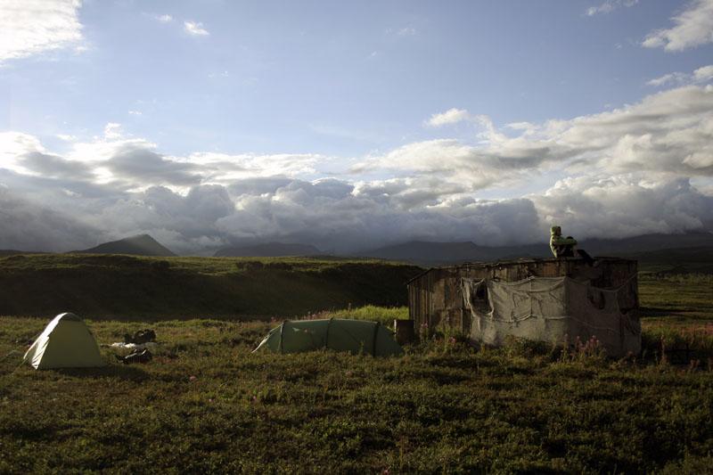 зелёный домик камчатка