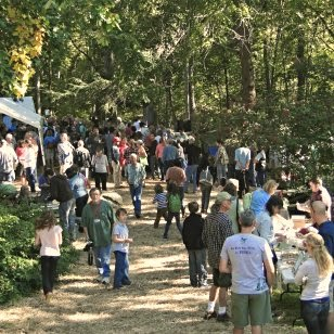 Social Crowd at the Wild Mushroom Festival Mystic CT _ New England Fall Events