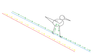 Kenapa Burung tidak terkena setrum saat bertengger diatas Kabel Listrik? Ini alasannya