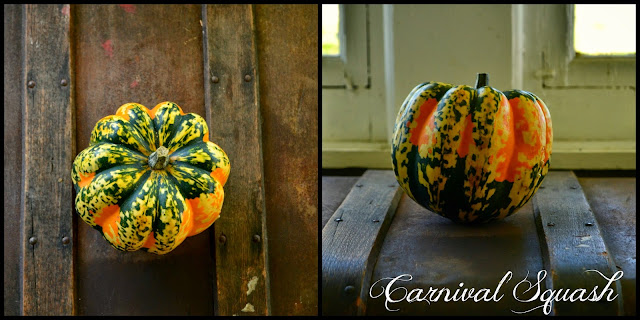 http://ironoakfarm.blogspot.com/2014/10/carnival-squash.html