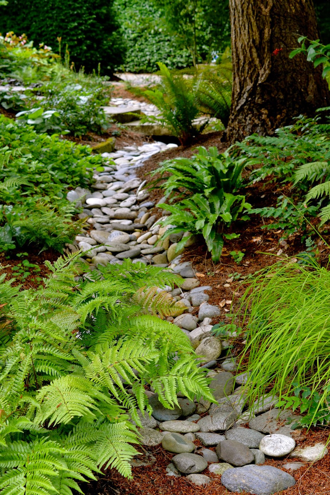 Bright green plants with river rock in between.