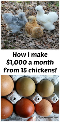make money from chickens