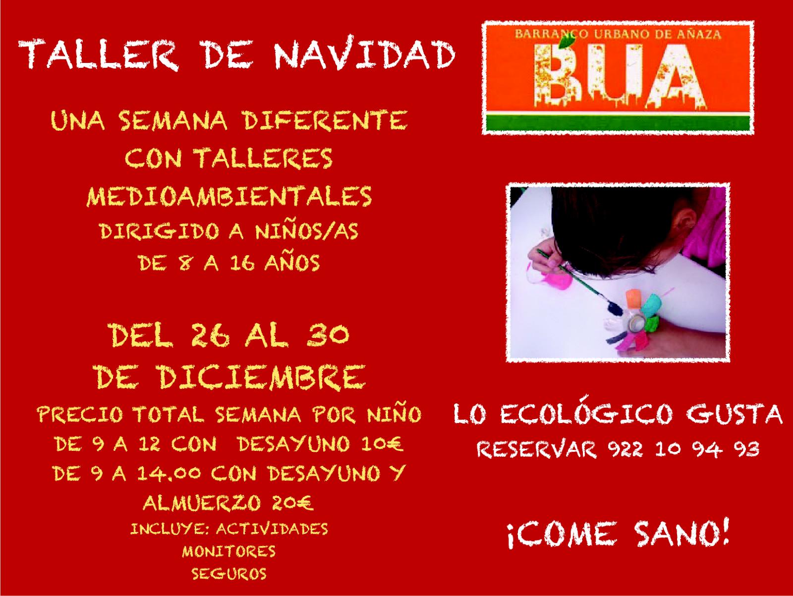 Santa María De Añaza Y San Pablo Taller Campamento Navideño En Búa
