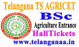 Telangana TS AGRICET 2018 BSc Agriculture Entrance Test 2018 Hall Tickets Download