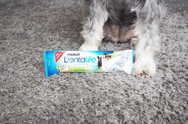 Purina Dentalife Dog Chew