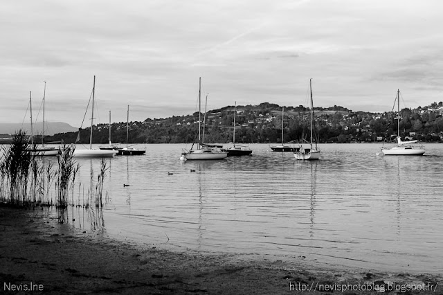 Photo lac de Paladru, bateaux en noir et blanc