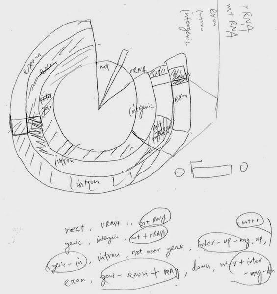 how to draw venn pie