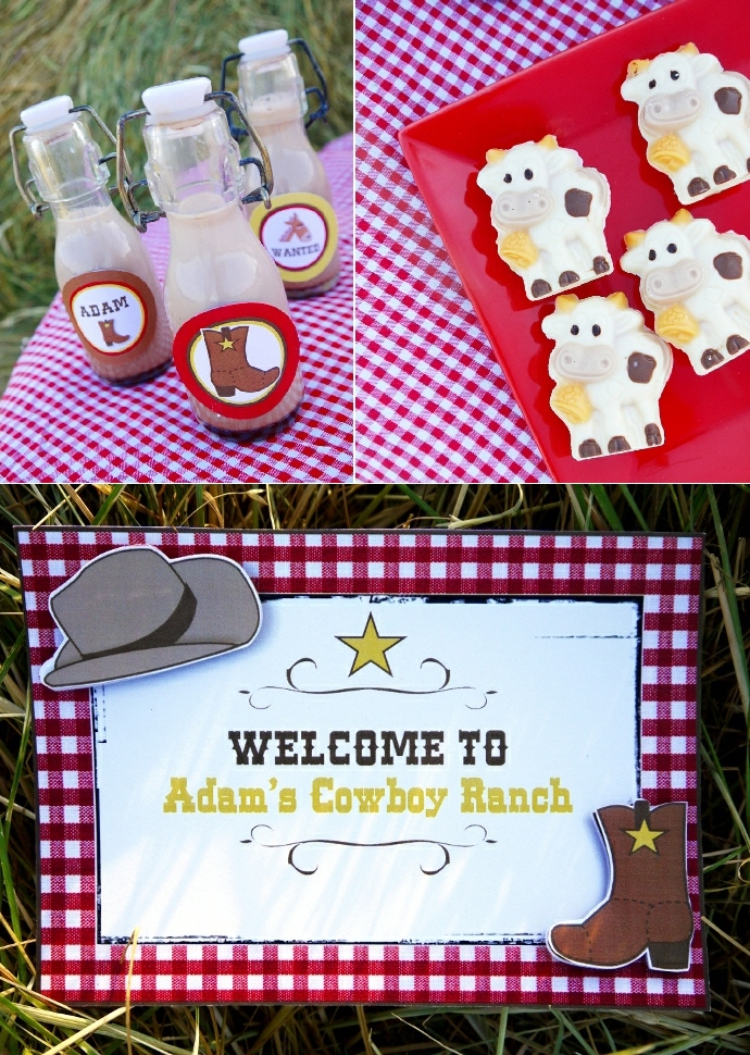 Wild West Cowboy Birthday Party with Printables - BirdsParty.com