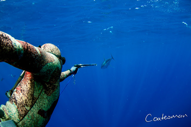Coatesmans Spearfishing Charters