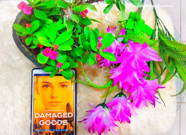Damaged Goods (Blank Slate #2) by Jennifer Bardsley | Blog Tour | Book Review
