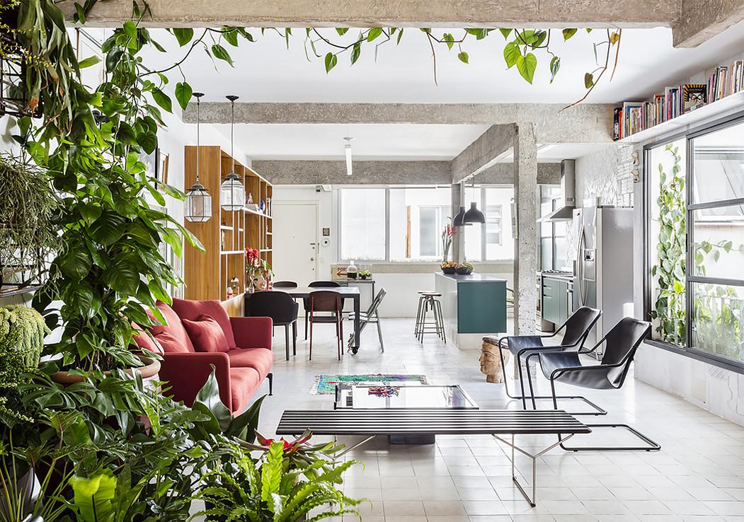 Appartamento con piante verdi e oggetti di antiquariato in for Piante d appartamento