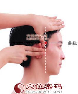 曲鬢穴位 | 曲鬢穴痛位置 - 穴道按摩經絡圖解 | Source:xueweitu.iiyun.com