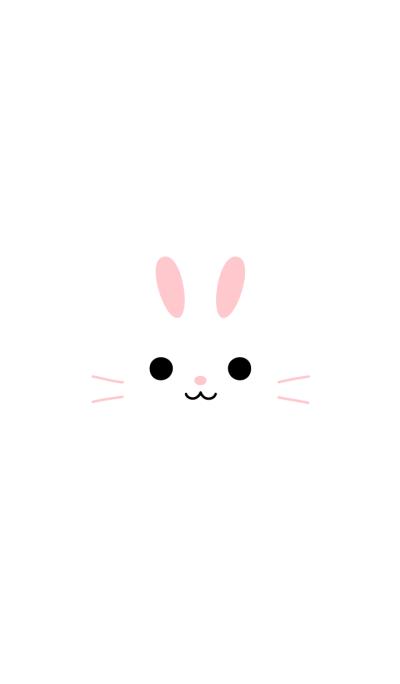 FACE (rabbit)