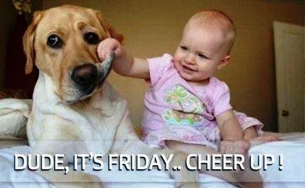 Hilarious Friday Memes